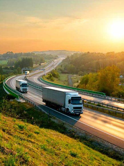 Máster en Logística y Jefe de Tráfico Por Carretera
