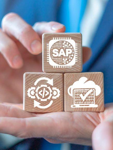 Introducción a SAP + Consultor SAP en Logística y Materiales – LO MM (Doble Titulación)
