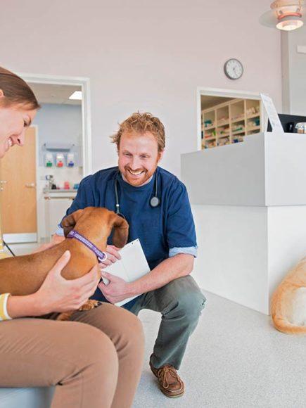 Recepcionista en Clínicas Veterinarias