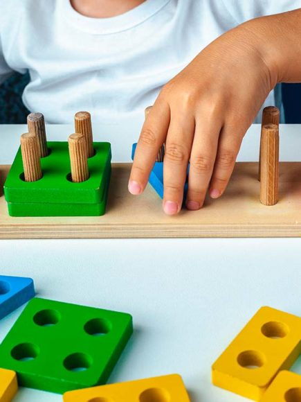 Máster en Pedagogía Montessori + Máster en Coaching e Inteligencia Emocional Infantil y Juvenil (Doble Titulación)