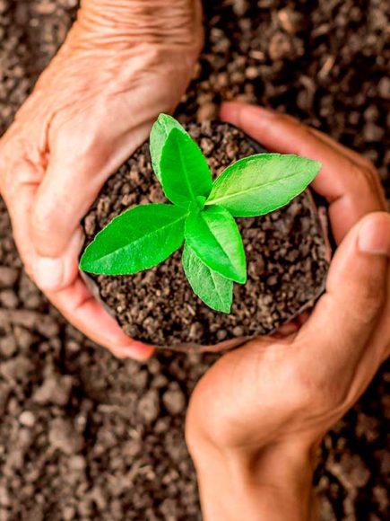 Máster en Gestión Integrada de Prevención, Calidad y Medio Ambiente