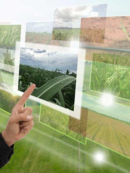 Máster MBA en Dirección de Empresas Agrarias (Certificación Universitaria Internacional + 60 ECTS)